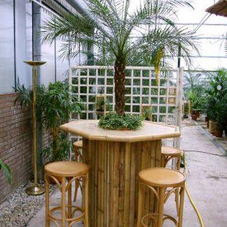 Foto van Bamboe statafel set