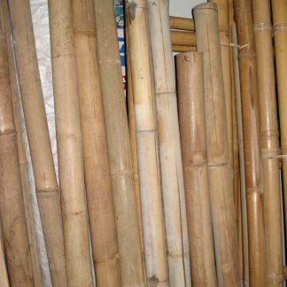 Foto van Bamboepalen (diverse lengtes)