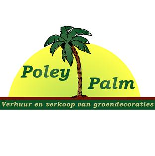 Foto van Pakket 2 Palmen/planten voor buiten
