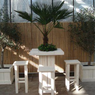 Foto van Steigerhouten Statafel met Palm