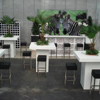 Foto van Pakket 6 Safaripakket met zebrabar en decoratie