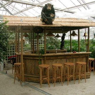 Foto van Bamboe Bar Groot incl.verlichting en op/afbouw