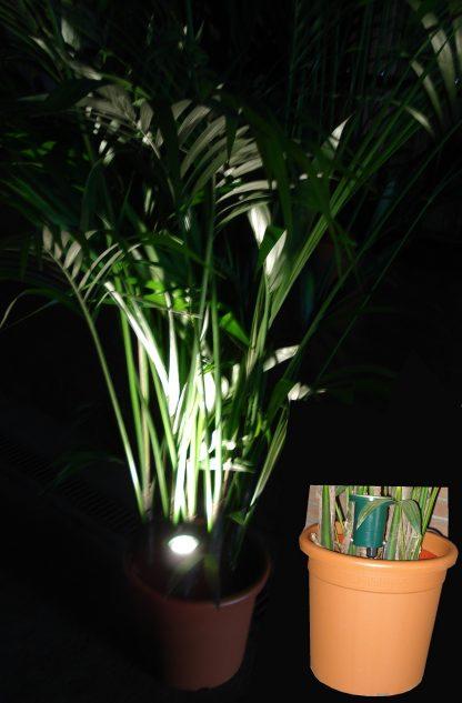Foto van Plantenspot LED 5 watt steekpen